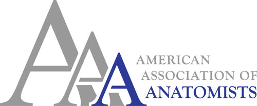 American Association of Anatomists